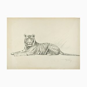 Tiger - Original Pencil Drawing by Willy Lorenz - Mid 20th Century Mid 20th Century