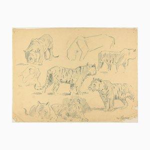 Studies of Tigers - Original Anthrazit Zeichnung von Willy Lorenz - Mid 20th Century Mid 20th Century