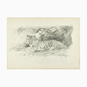 Roaring Tiger - Original Pencil Drawing by Willy Lorenz - 1940s 1940s
