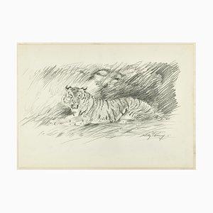 Tigre rugiente - Lápiz de dibujo original de Willy Lorenz - años 40