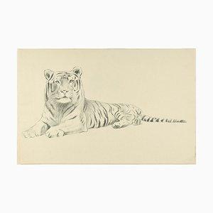 Croquis d'un Tigre - Dessin au Pluie Original par Willy Lorenz - 1950s 1950s