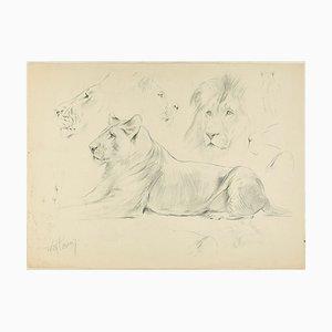 Sketch - Dibujo original a lápiz de Willy Lorenz - años 50