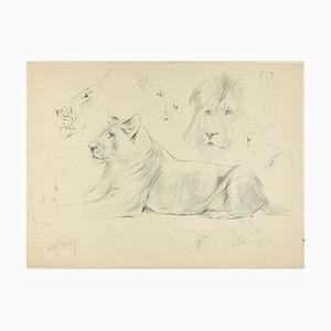 Sketch - Original Pencil Drawing by Willy Lorenz - 1950s 1950s