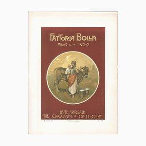 Fattoria Bolla - Vintage Advertising Lithographie von Achille Beltrame - 1910 ca. Ca. 1910