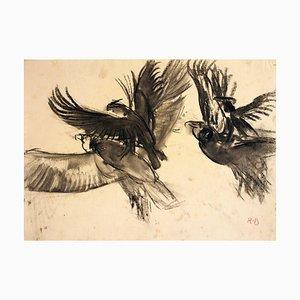 Avvoltoio - Disegno carboncino originale di Renato Brozzi - inizio 1900 inizio 1900