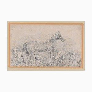 Cavallo con mandrie - Disegno originale in china di Filippo Palizzi - 1895-1895