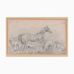 Horse with Herds - Original China Ink Drawing by Filippo Palizzi - 1895 1895