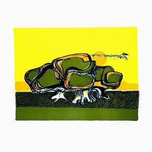 Litografía Turtle - Original de Carlo Quattrucci - 1971 1971