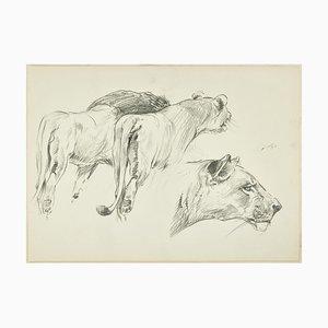 Felines - Lápiz de dibujo original de Willy Lorenz - Mid-Century Mid-Century, siglo XX