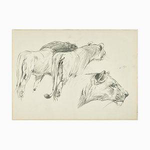 Felines - Original Pencil Drawing by Willy Lorenz - Mid 20th Century Mid 20th Century