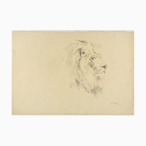 Lion - Original Charcoal Drawing by Willy Lorenz - 1971 1971
