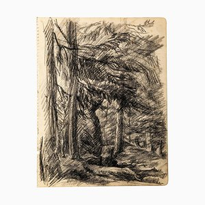 Wood - Original Charcoal Drawing by Jean Chapin - Early 1900 Early 1900