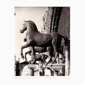 Cathedral of San Marco, Venice - Vintage Photo by Studio Bohm - 1950s 1950s