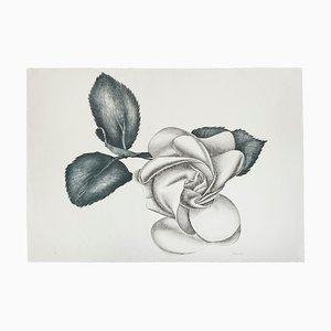 Black Rose - Original Etching by Giacomo Porzano - 1972 1972