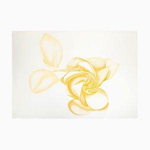 Yellow Rose - Original Etching by Giacomo Porzano - 1972 1972