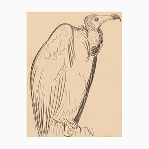 The Condor - Original Pencil Drawing - Mid 20th Century Mid 20th Century