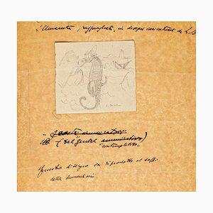 Cavalluccio marino - Disegno originale - 1935, 1935