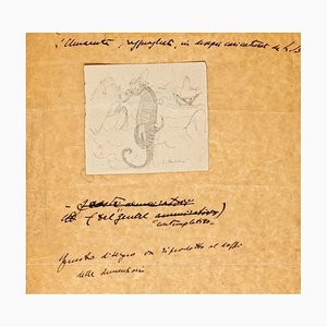 Sea Horse - Original Drawing - 1935 1935