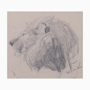 Cabeza de león - Original Pencil Drawing de Etha Richter - años 30