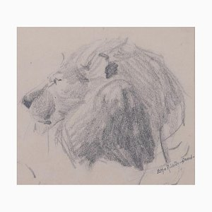 Testa di leone - Disegno originale a matita di Etha Richter - anni '30s