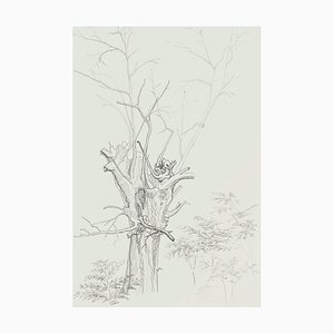 Winter Tree - Original Pencil Drawing by French Master mid 20th Century Mid 20th Century