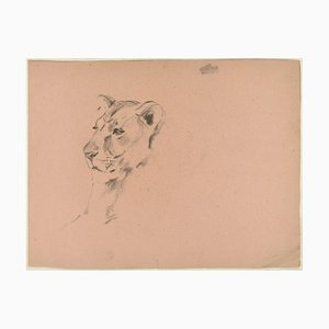 Lioness and Hunter - Original Charcoal Drawing by Willy Lorenz - 1970s 1970s