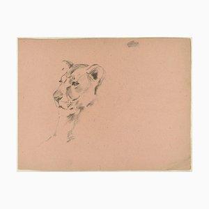Löwin und Hunter - Original Charcoal Zeichnung von Willy Lorenz - 1970er 1970er