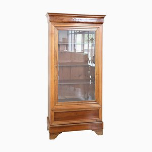 Antique Walnut Bookcase or Vitrine, 1850s