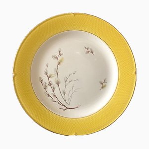 Bourgeons Plates from Salins, 1950s, Set of 20