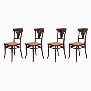 Antique No. 221 Chairs from Thonet, 1900s, Set of 4