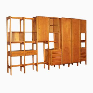 Beech Veneer, Ash Tree & Beech Wardrobe Bookcase by Mario Vender, 1961