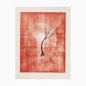 Tree - Original Lithographie von E. Conciatori - 1970s 1970s