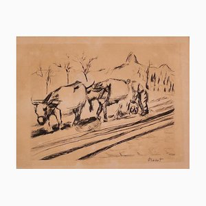 Cows - Original Etching on Paper - 20th Century 20th Century