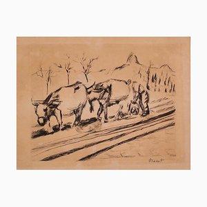 Kühe - Original Radierung auf Papier - 20. Jahrhundert 20. Jahrhundert
