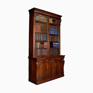 Antikes Bibliothek Bücherregal aus Palisander mit 2 Türen
