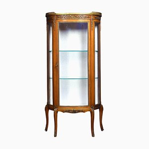 Small Antique Single Door Display Cabinet