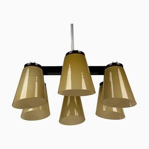 Ceiling Lamp with 6 Handmade Opaline Glass Shades from Lidokov, 1950s