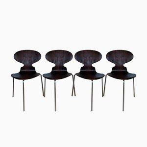 Vintage Palisander Ant Chairs von Arne Jacobsen für Fitz Hansen, 4er Set