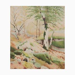 Trees - Original Watercolor - 1950s 1950s
