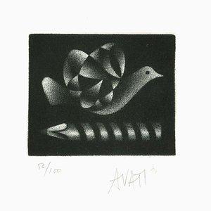Pigeon - Original Etching on Paper by Mario Avati - 20th Century 1960s