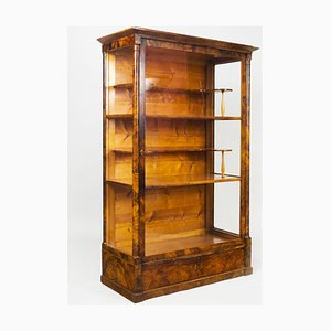 19th Century Czech Biedermeier Display Cabinet in Shellac Polish & Walnut
