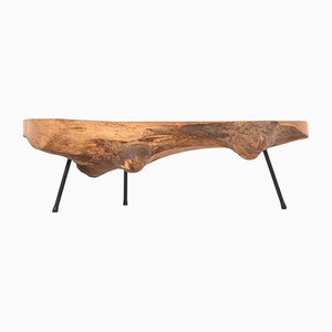 Mid-Century Modern Tree Trunk Coffee Table Attributed to Carl Auböck, 1950s