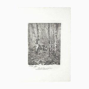 Beeches Etching on Paper by Augusto Sezanne