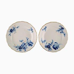 Meissen Plates in Hand-Painted Porcelain with Flowers and Gold Rim, Set of 2