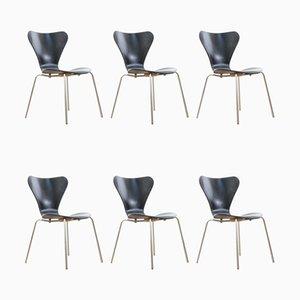 Skandinavische Mid-Century Modern Stühle von Arne Jacobsen für Fritz Hansen, 6er Set