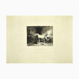 Stall - Original Radierung auf Papier von Jules Hereau - Spätes 19. Jh. Ende 19. Jh