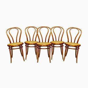Bistro Chairs by Jacob & Josef Kohn, 1930s, Set of 5