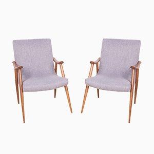 Czech Grey Armchairs, 1960s, Set of 2