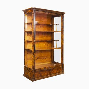 19th Century Biedermeier Czech Display Cabinet in Shellac Polish Walnut