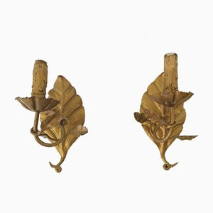 Mid-Century Golden Leaf Sconces, Set of 2